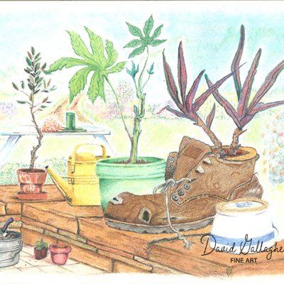 Plant Life Fine Art Print