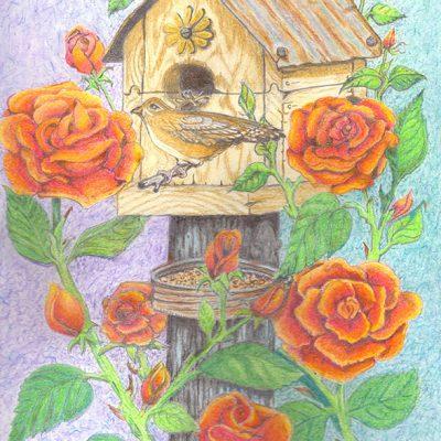 Bird's House